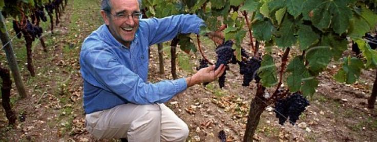 Jean-Claude Berrouet